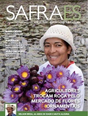 Agricultores trocam roça pelo mercado de flores