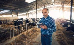 Proprietários de imóveis rurais já podem emitir CCIR 2021