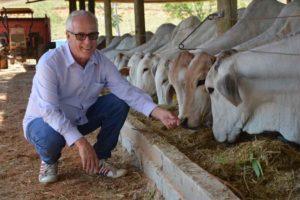 Pecuarista do ES inova e usa sistema de bem-estar animal no gado de corte