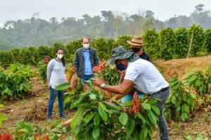 Poda de produção do cacau é tema de encontro em Santa Rosa, Linhares