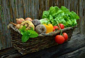 Portaria estabelece critérios para a Certificação Voluntária dos produtos de origem vegetal