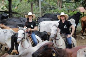 Irmãs Amazonas: sucesso na web e na qualidade do leite