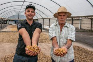 Programa de qualificação para exportação potencializa atividade cafeeira em Castelo