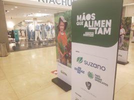 VÍDEO | Mãos que Alimentam atrai público e conquista olhares no Shopping Vitória