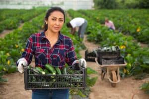 Feira em Vitória irá valorizar a força empreendedora da mulher do campo