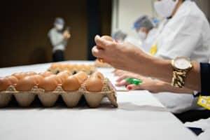 É sexta-feira! Fique por dentro do 5º Concurso de Qualidade de Ovos Capixaba