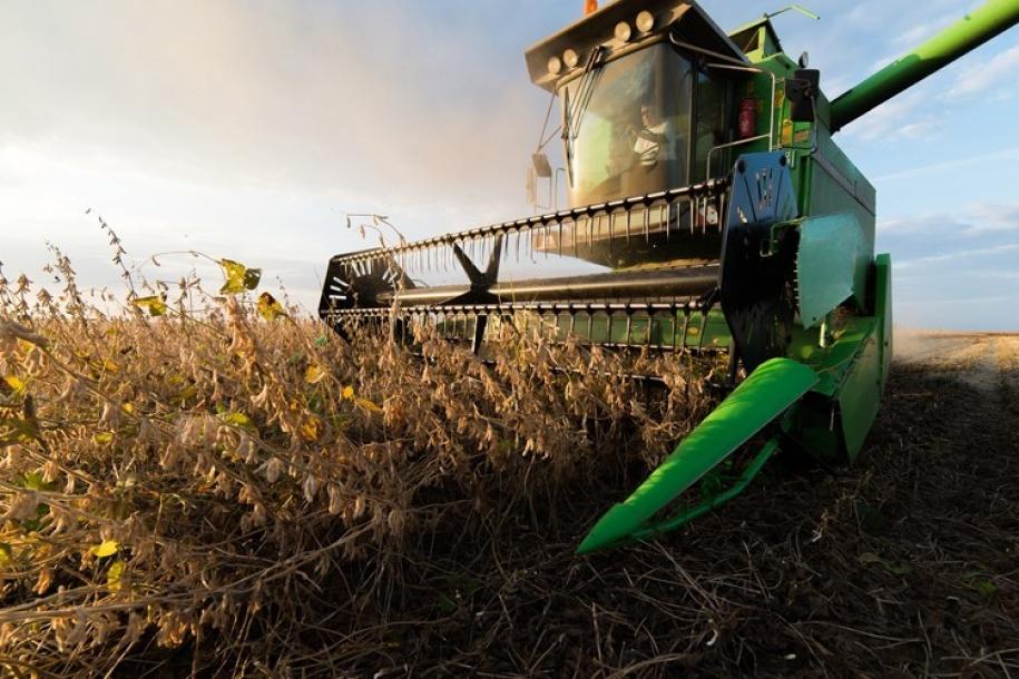 Brasil cresce 0,6% no 3º trimestre com força de agropecuária, consumo e indústria