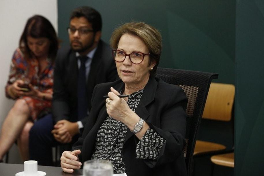Ministra destaca importância de sistema de rastreabilidade para a pecuária do país