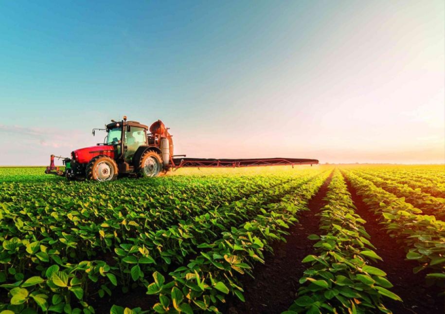 Publicada extensão de uso de três defensivos agrícolas para pequenas culturas